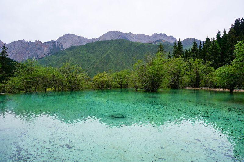 九寨沟旅游攻略图片62