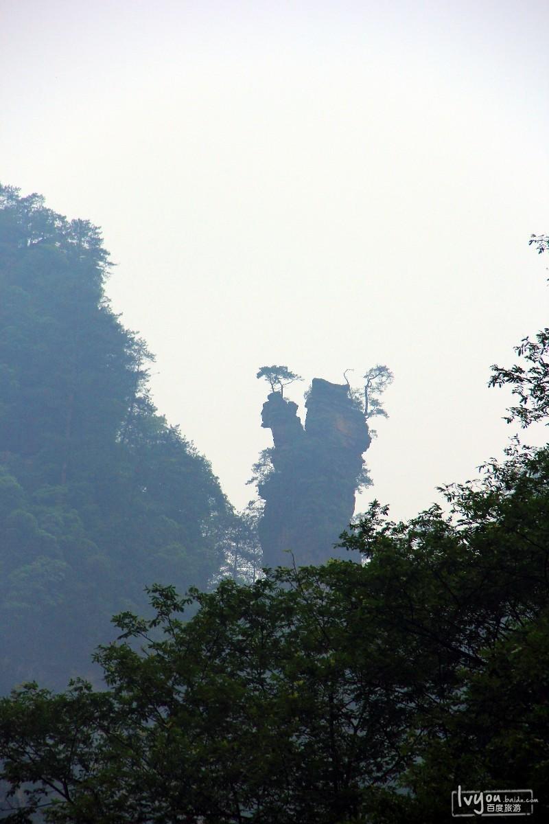 张家界国家森林公园旅游攻略图片42
