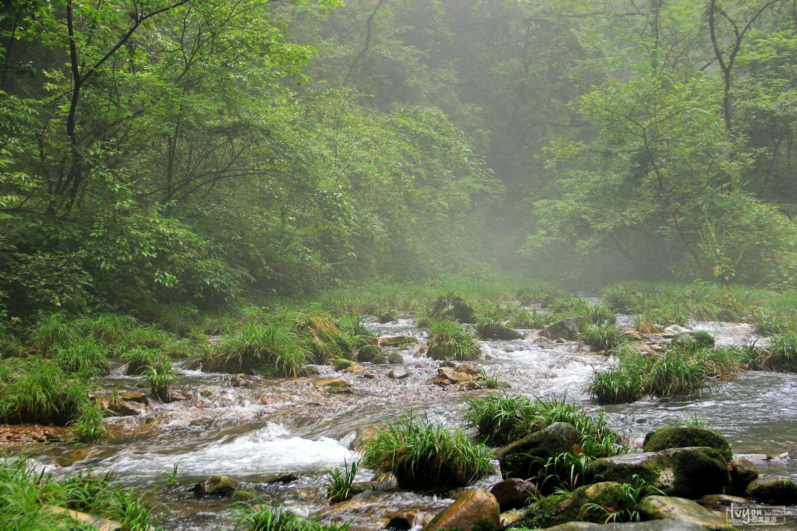张家界国家森林公园旅游攻略图片39
