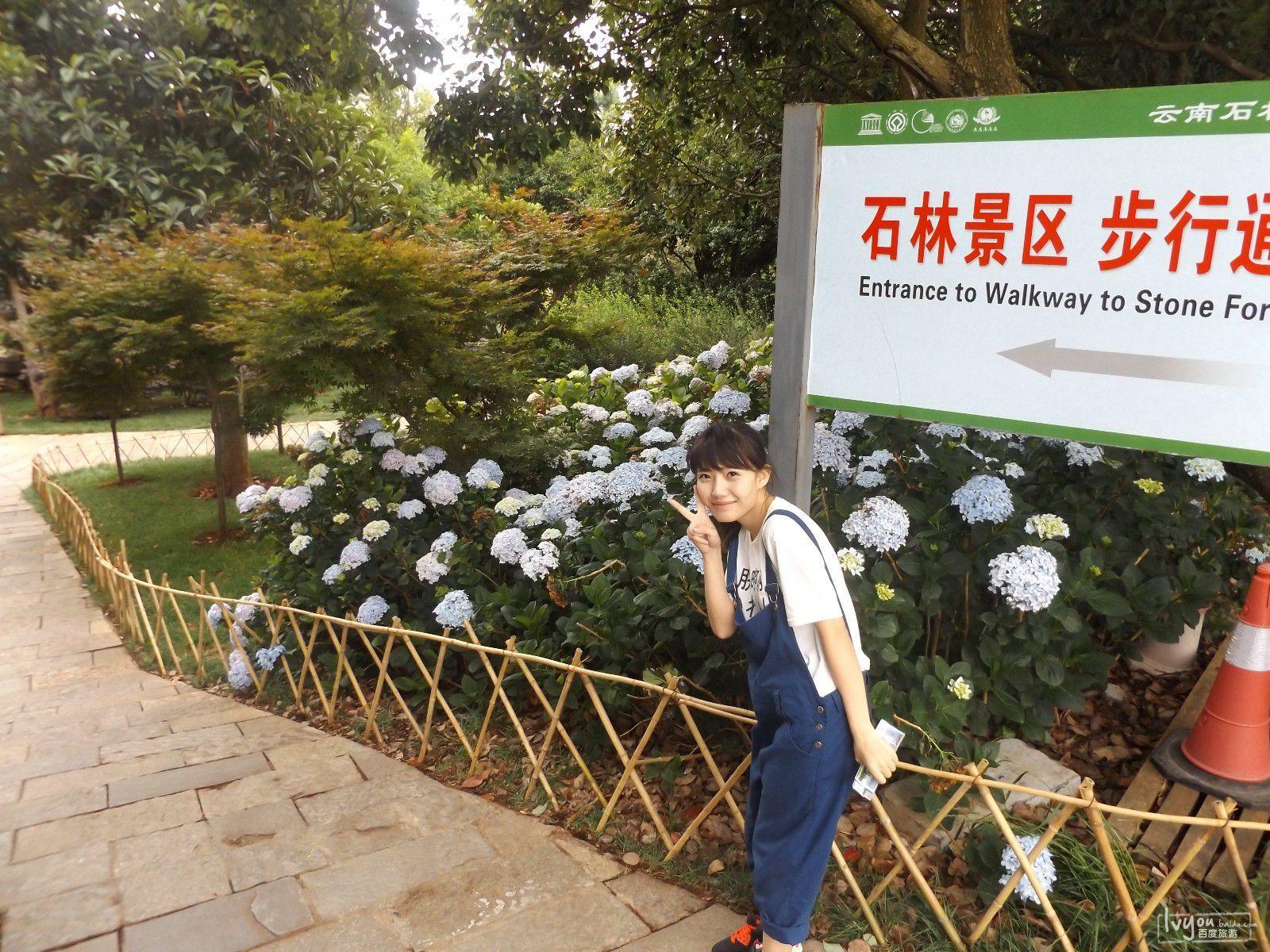 丽江旅游攻略图片9