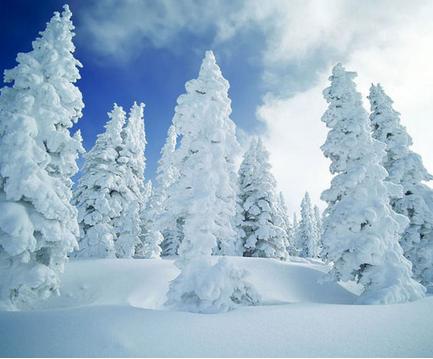 写下雪的现代诗