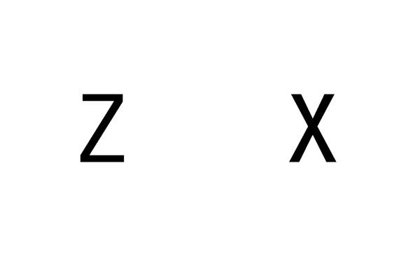 �z.����z)�_谁能帮我制作一张白底然后有z x两个字母黑体的图片