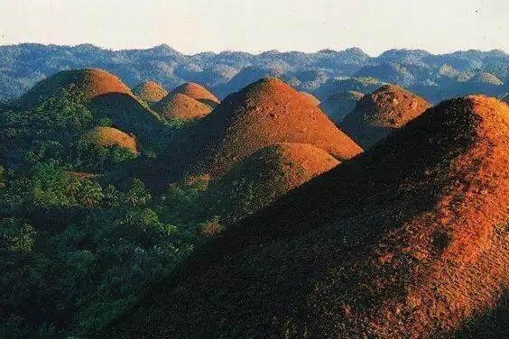 我国云南石林的奇特之处
