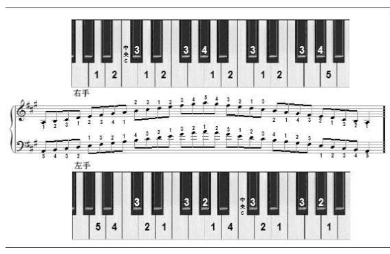 眼睛�z)Ṣb��+�d#�`e���_电子琴的键盘上的大调分别是那几个,分别在上面位置_