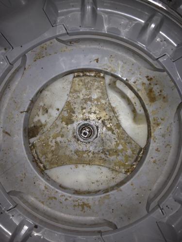 小天鹅洗衣机_小天鹅波轮洗衣机内桶怎么拆出来?谢谢!_百度知道