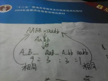 WWW_16AABB_COM_基因型为aabb的个体和aabb的个体杂交,f2代中表现型与