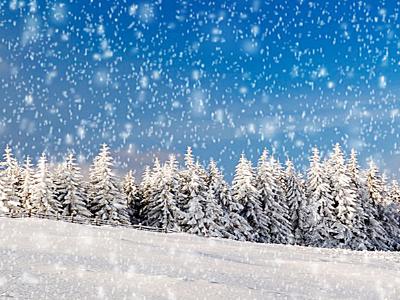 盼雪的诗词 有关雪的诗词 诗词歌曲