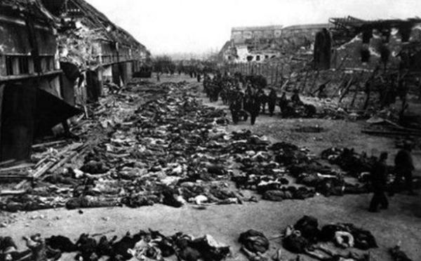 二战总共死了多少犹太人?