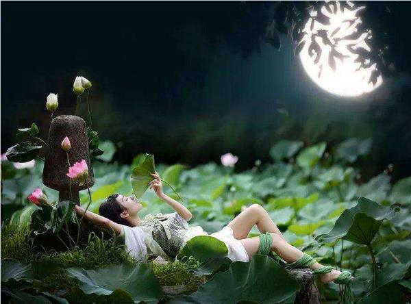 形容做了美梦的诗词 形容美梦的诗句有哪些 诗词歌曲