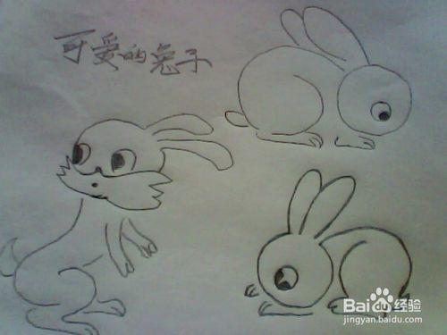 兔子的尾巴什么样简笔画