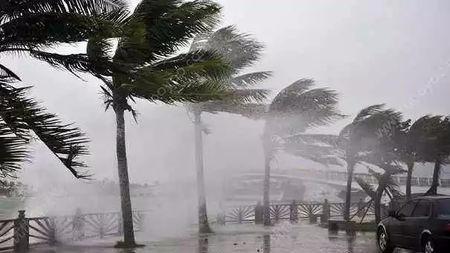 """紧急!年度""""最强台风""""来袭…它有多厉害?"""