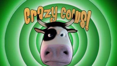 涨姿势!为什么疯牛病那么可怕?的头图