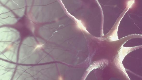 能很快复活人类?科学家用干细胞扭转死亡引争议