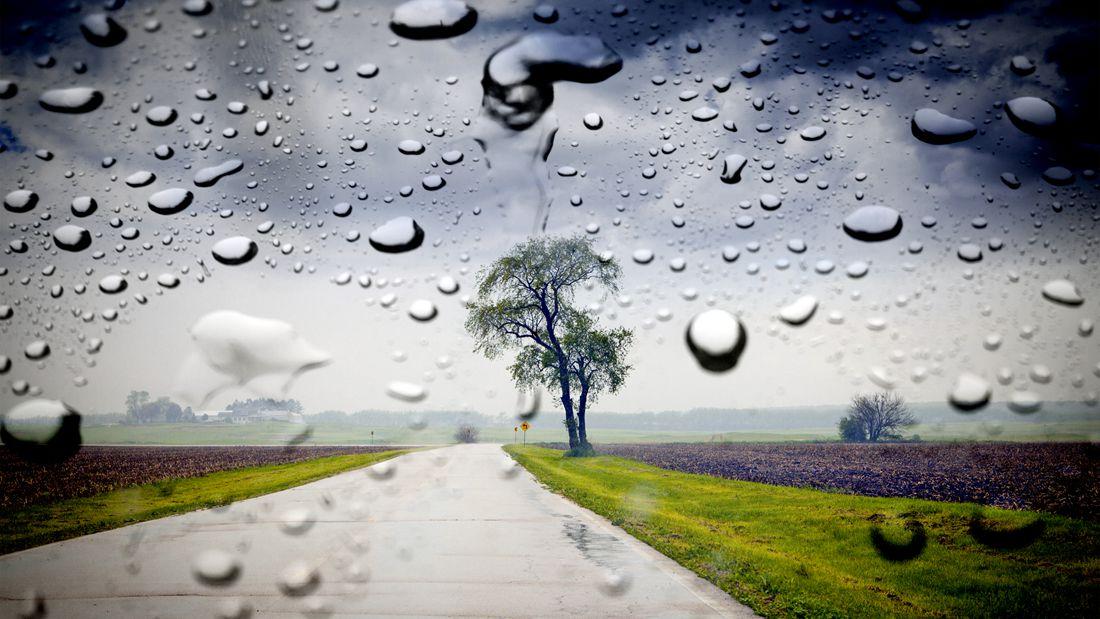 雨后城市是致病细菌的培养基?这些你一定要注意!