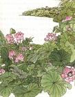 古诗的照片,有哪些关于古诗的图片?