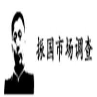 天津振国市场调查有限公司