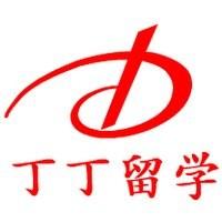 上海丁丁学高因私出入境服务有限公司
