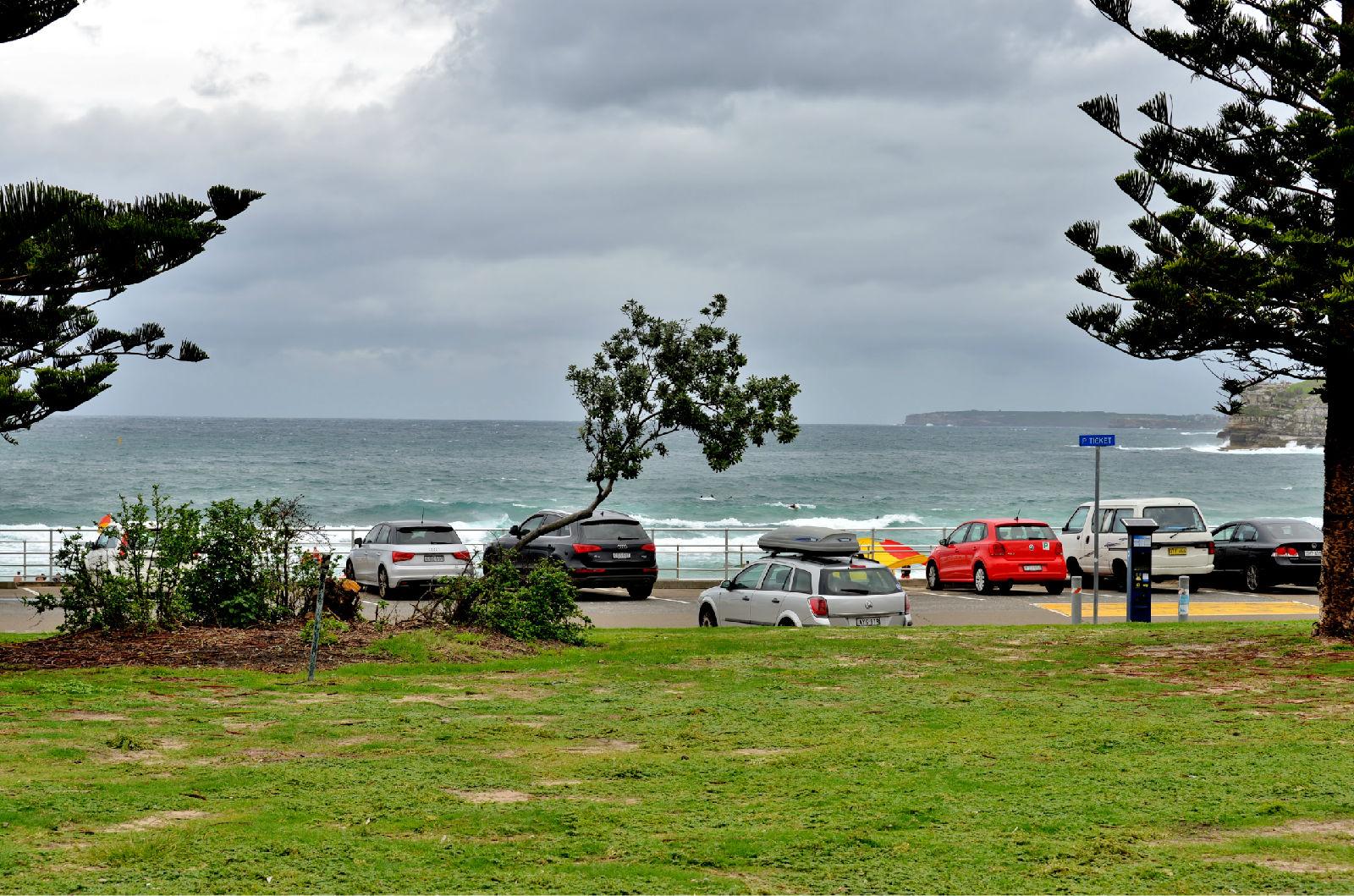 澳大利亚旅游攻略图片302