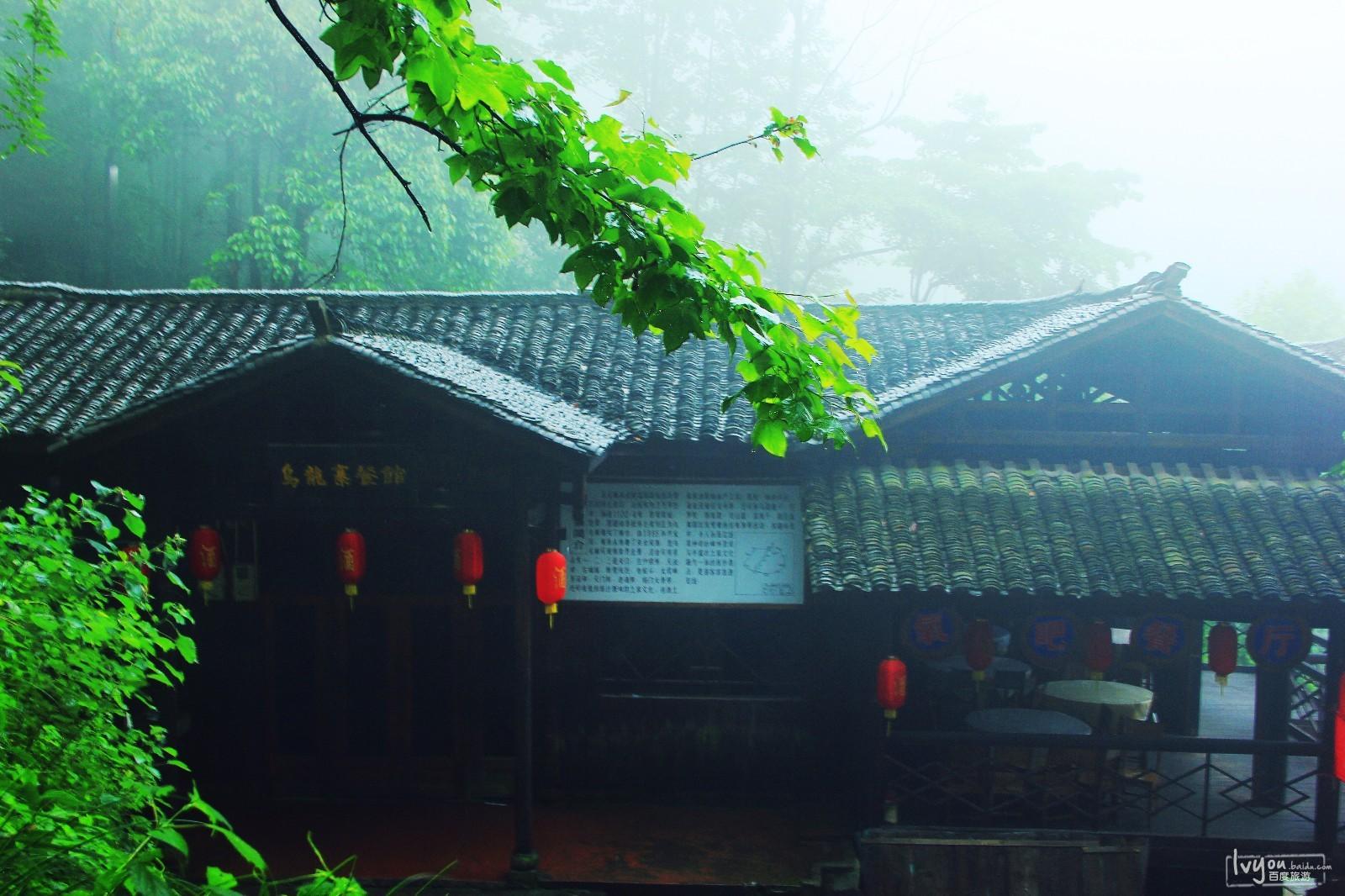张家界国家森林公园旅游攻略图片29