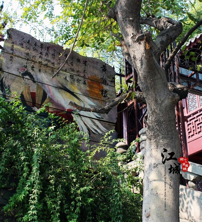 武汉旅游攻略图片121