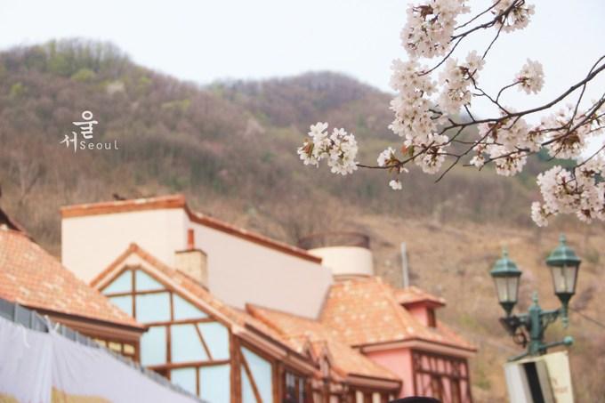 韩国旅游攻略图片12