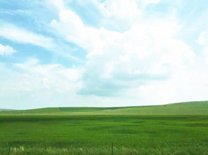 呼伦贝尔大草原旅游攻略图片19