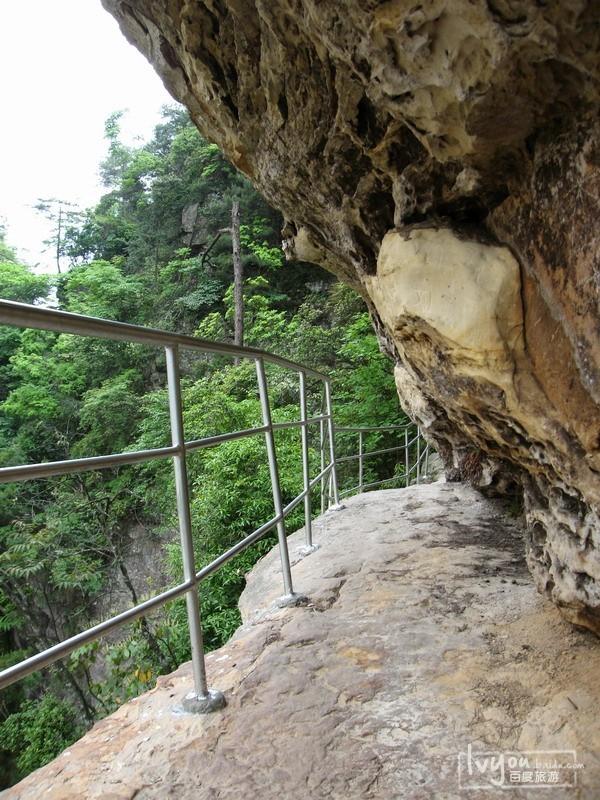 张家界国家森林公园旅游攻略图片32