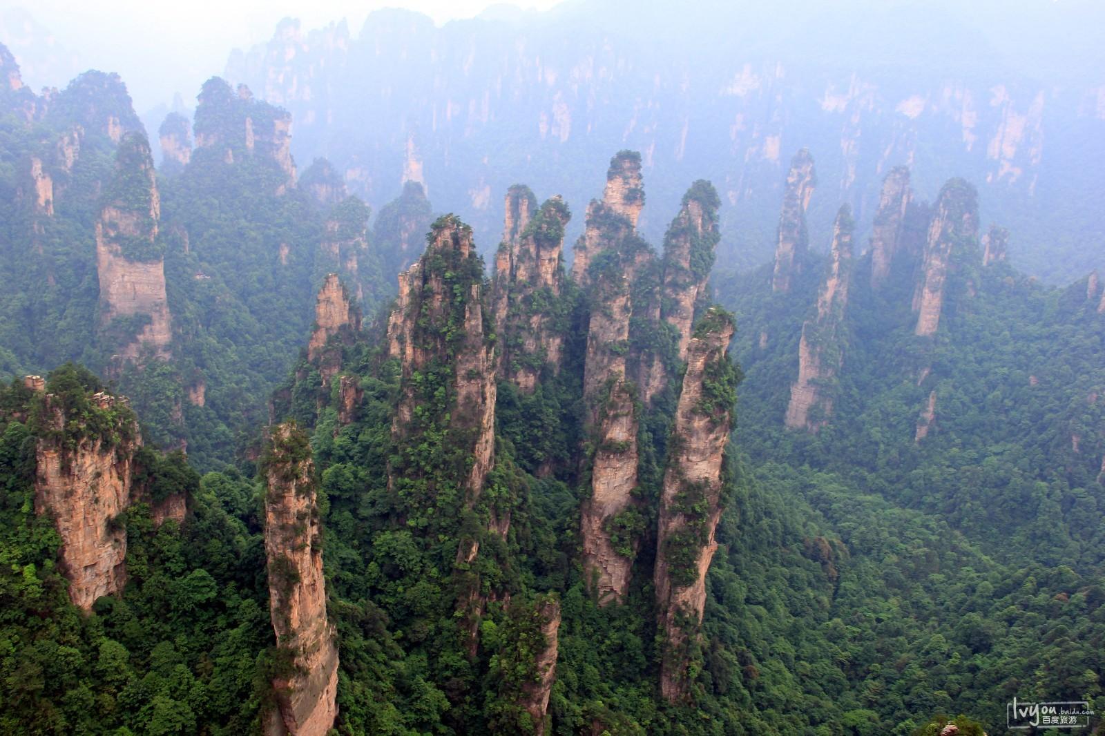 张家界国家森林公园旅游攻略图片15