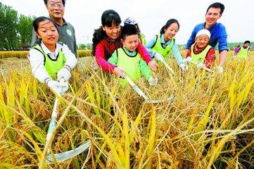 各个季节农事活动除草