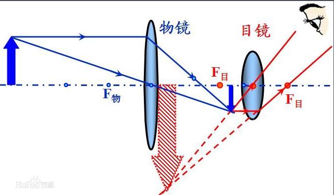 望远镜的原理图片_望远镜原理图解