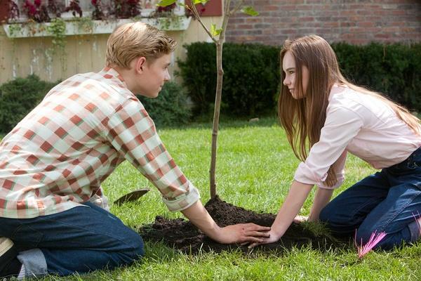 梦到和一个男人一起种树