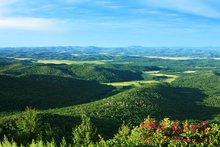1公顷等于1万平方米_1公顷等于多少亩或多少平方米_百度知道