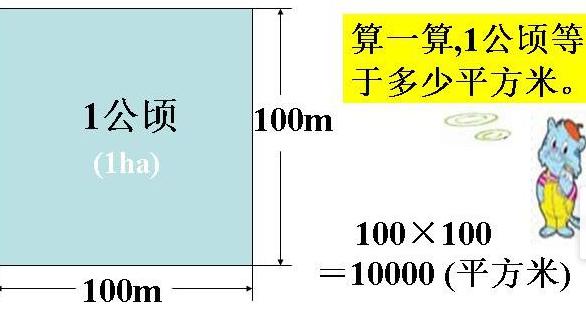 1公顷等于几平方米_1公顷=多少平方千米=多少平方米_百度知道