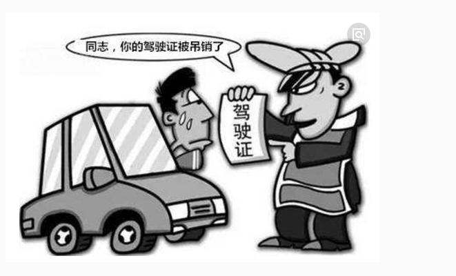 实习期驾照被当场吊销