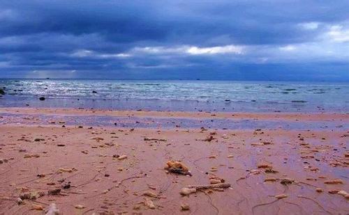 北海海底世界好玩_北海海底世界和海洋之窗哪个好玩?_百度知道