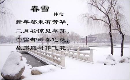 咏雪和梅的诗词 梅花咏雪的诗句