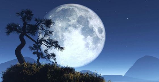 """""""露从今夜白,月是故乡明""""是谁的诗?整首诗写什么?"""