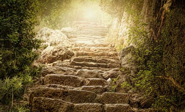 山路的诗词 山路崎岖又漂亮的诗句