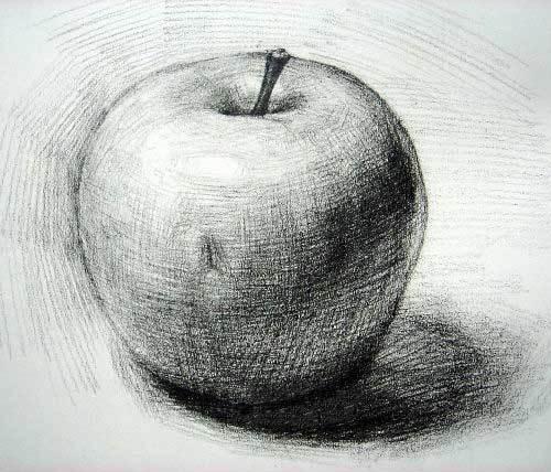 素描苹果的阴影怎么画图片