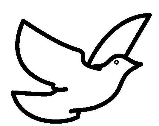 鸽子怎么画