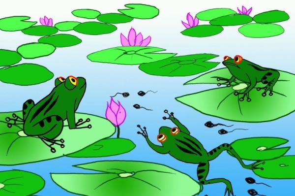 描写青蛙叫声的诗词 描写青蛙的古诗有什么