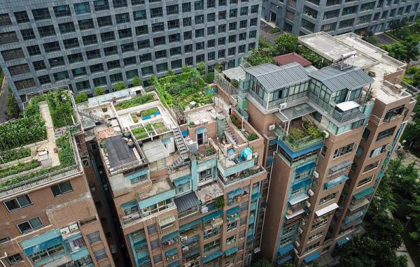 成都一小区楼顶全被违建情形如何?