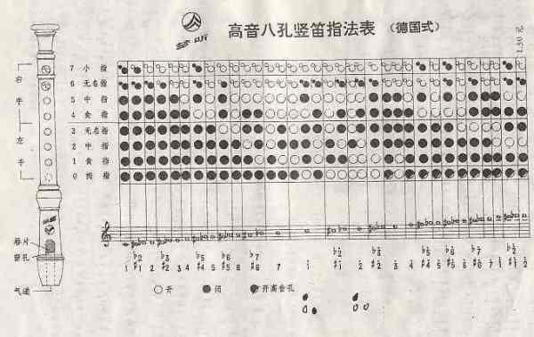 八孔竖笛指法表