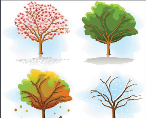 一年四季怎么分 ?每个季节各是哪几个月?