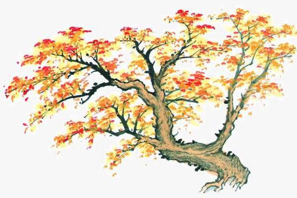 秋分时节诗词 秋分节气的古诗词有哪些