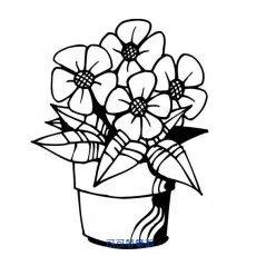 一盆花简笔画,植物简笔画,花卉简笔画,一盆漂亮的花朵简笔画图片.