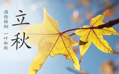 一叶梧桐一报秋诗词 一叶梧桐一抱秋是那首诗