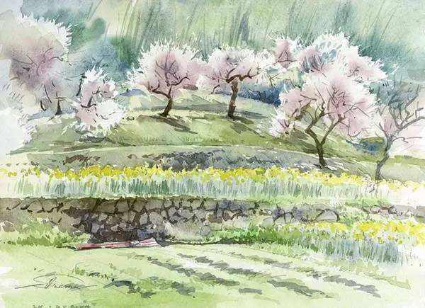 花的古诗词名句 关于花草的古诗名句