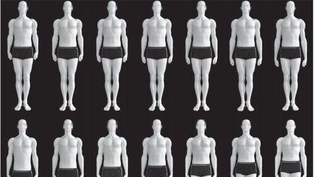 女看三围男看腿!从进化的视角观人体之美