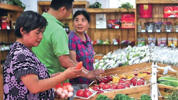 你买得起的有机蔬菜,可能是假的?的头图